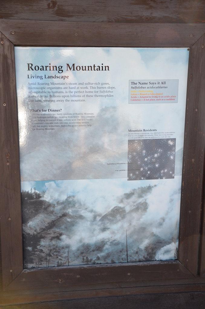 Roaring Mountain
