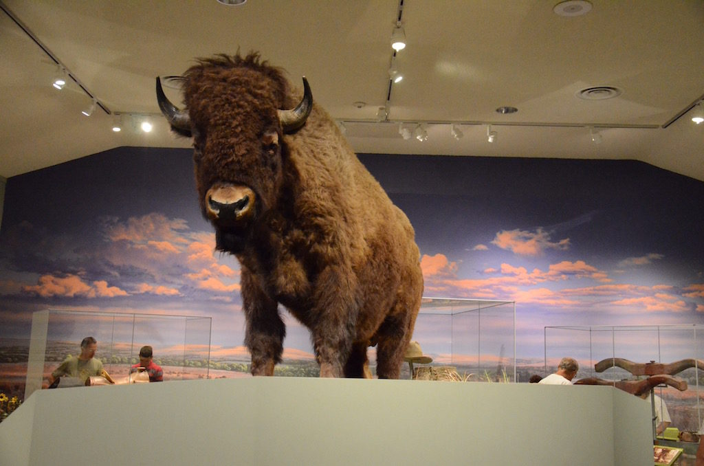 Of course they had Bison (Buffalo)