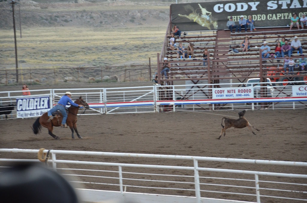 And cow roping