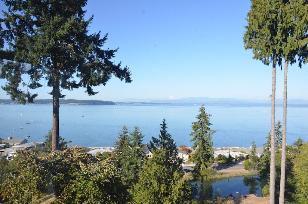 The view from Doug and Cindy's deck of their home in Bellevue