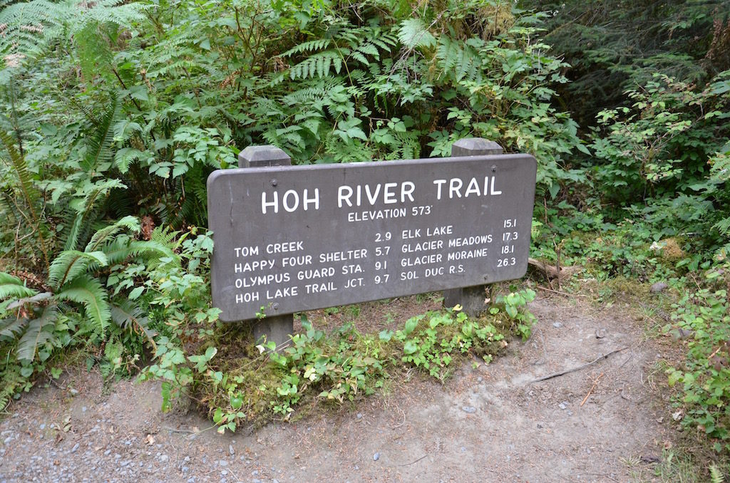 We took a day trip to the Hoh Rain Forrest