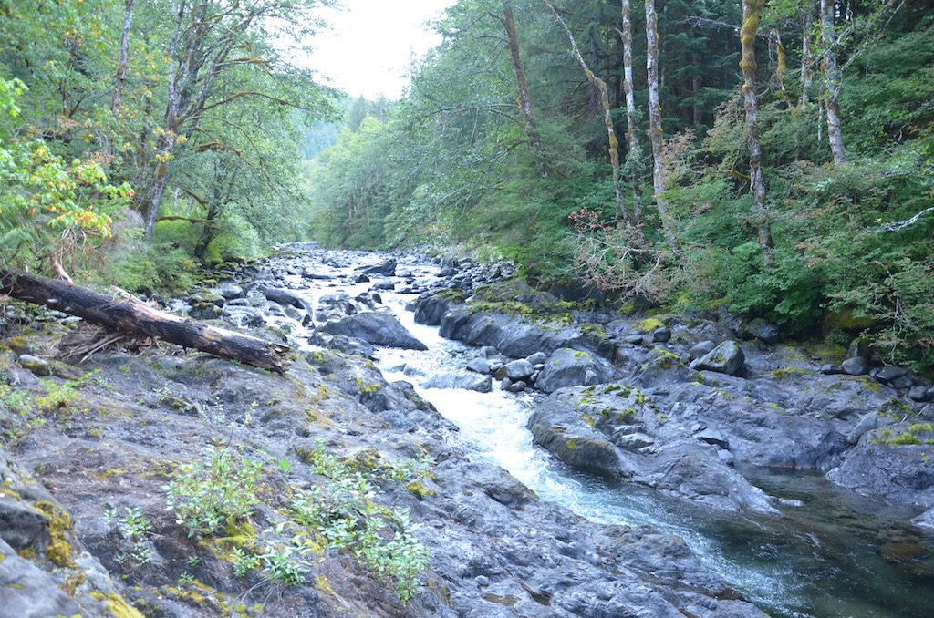 Off the side of the road was this small rapids called Salmon Falls. At the right time of year Salmon are going up stream to spawn.